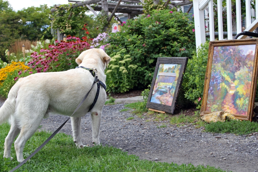 Hutch admires the scene at the Great Vermont Plein Air Paint-Out.